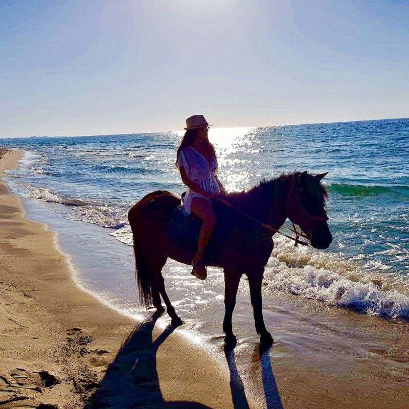 girl with horse on sunset